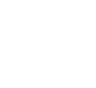 NEW ARRIVALS FROM EUROPE